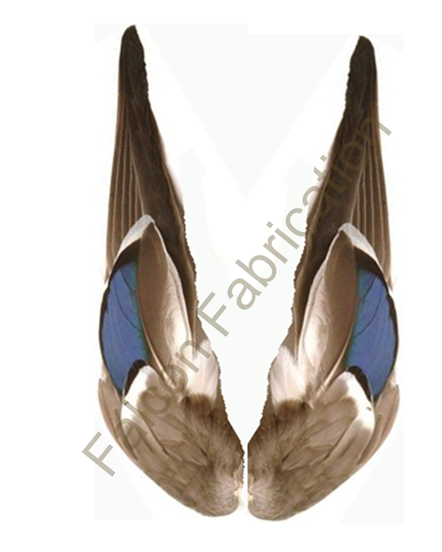 mallerd-wings